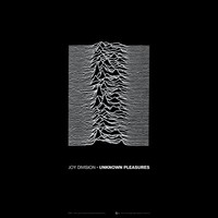 Unknown_Pleasures_Joy_Division.jpg