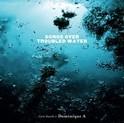songs_over_troubled_water_copie_1.jpg