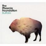 phoenixfoundation_buffalo.jpg