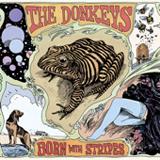 the_donkeys__born_with_stripes.jpg