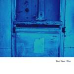 part_imer_blue.jpg