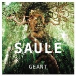 saule-geant