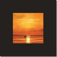 De-La-Jolie-Musique-Memoire-Tropicale