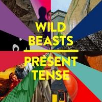 Wild Beasts 2014