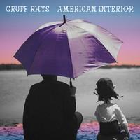 Gruff Rhys 2014