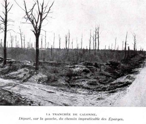 Carrefour de Calonne. Une tranchée du 18e siècle à quelques kilomètres des Eparges, qui servait pour la montée en ligne des soldats. A noter les arbres détruits pas l'artillerie