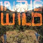 FaltyDL---In-The-Wild