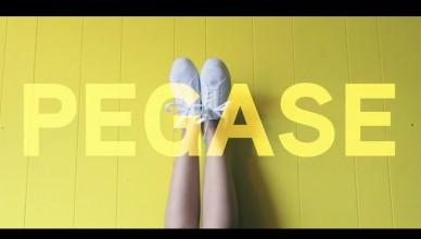 Pegase-video