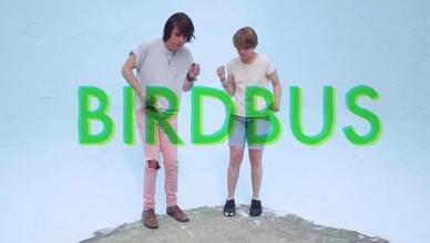 Ropoporose – Birdbus clip