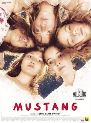 Mustang : Affiche - film de Deniz Gamze Ergüven