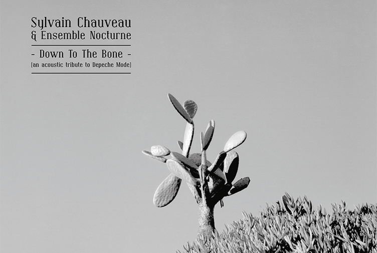 Sylvain Chauveau & Ensemble Nocturne - Down to the Bone (an acoustic tribute to Depeche Mode)