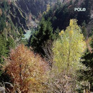 pole - wald album