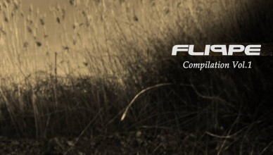 flippe