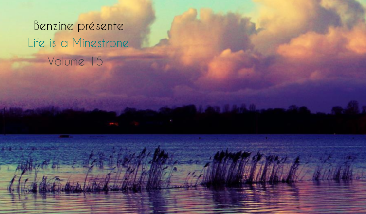 Life is a Minestrone, Volume 15 - detail + titres 752