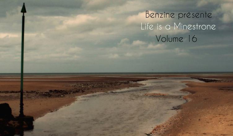 Life is a Minestrone, Volume 16 spec benzine + titre