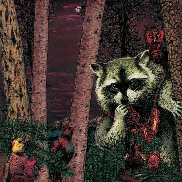 Wild Raccoon :: Half Pine Cone