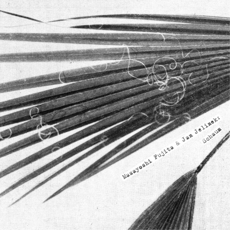 Masayoshi Fujita & Jan Jelinek - Schaum cover