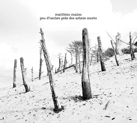 Matthieu Malon - Peu d'ombre près des arbres morts