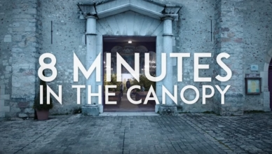 8 MINUTES - IN THE CANOPY