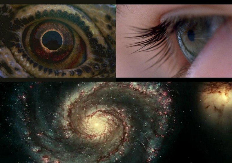 Voyage of Time – Terrence Malick