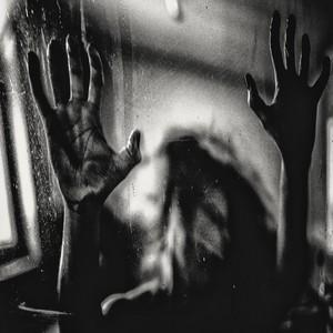 Harmonic Behind the Shadow Drops
