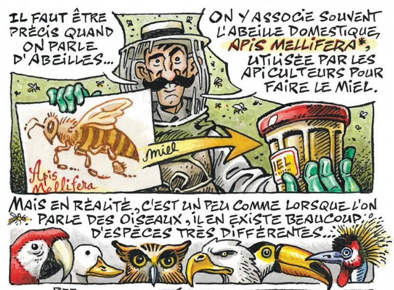 La Petite Bédéthèque des Savoirs, volumes 19 & 20 – Collectif