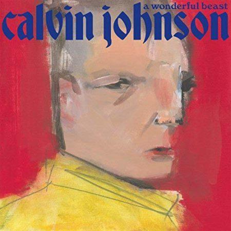 Calvin Johnson - A Wonderful Beast