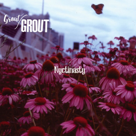 Grout Grout – Nyctinasty