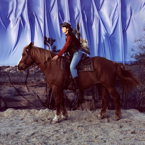 Holy Motors - Horse