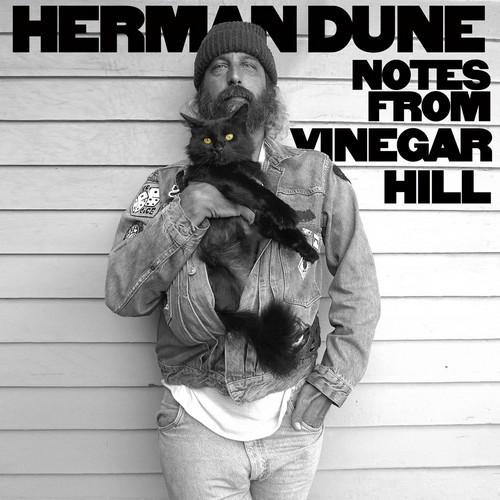 Herman Düne – Notes from Vinegar Hill