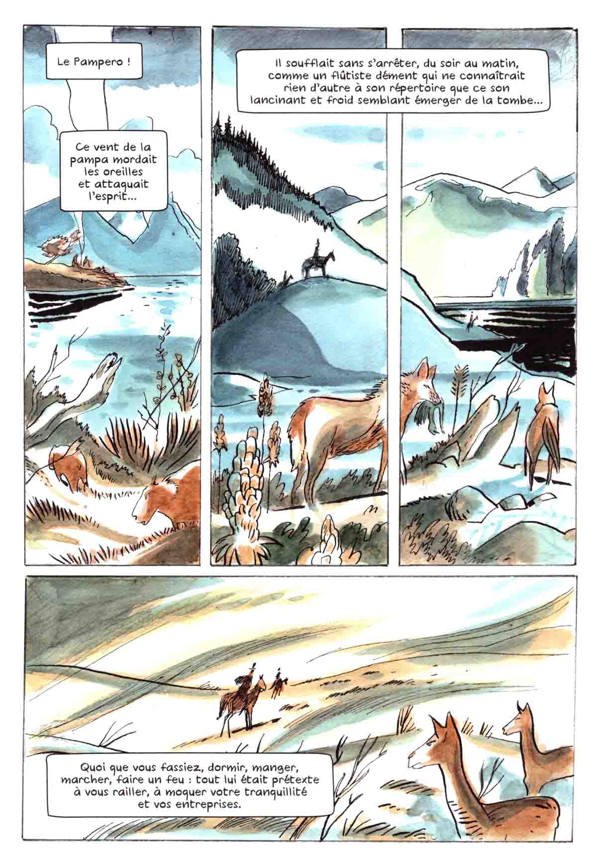 Roi du vent, un Gascon en Patagonie - Fabien Tillon & Gaël Remise