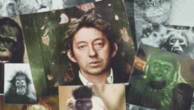 Vu de l'extérieur - Gainsbourg v