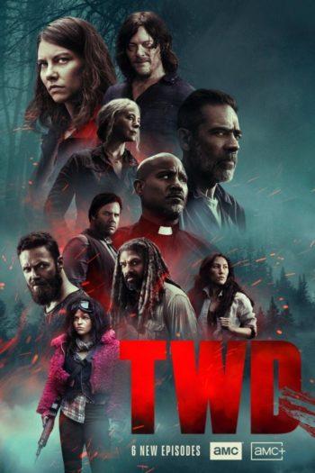 Walking Dead S10 épisodes Poster