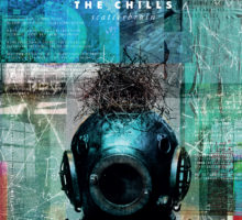 The Chills–Scatterbrain