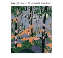 Will Stratton - The Changing Wilderness